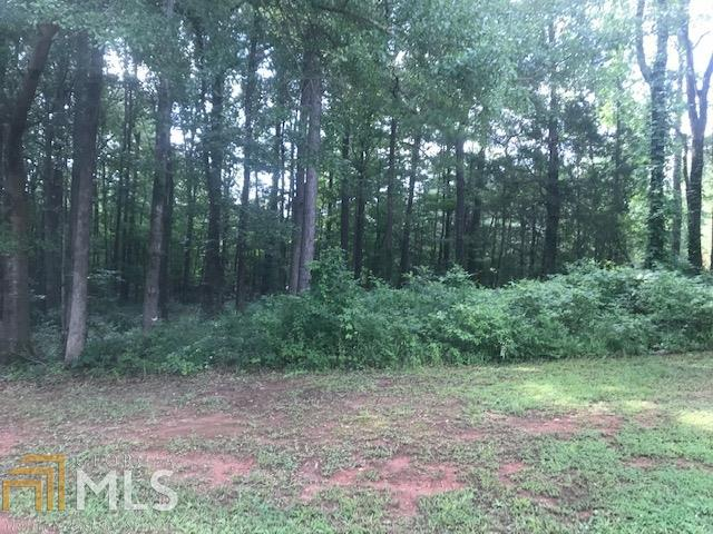 0 Chapel Springs Lot 63, Eatonton, GA 31024 (MLS #8609486) :: Anita Stephens Realty Group