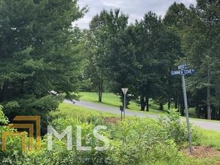 0 The Hills At Queen Gap #19, Blairsville, GA 30512 (MLS #8612778) :: Bonds Realty Group Keller Williams Realty - Atlanta Partners