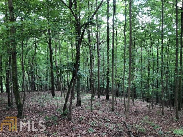 0 Walhalla Ct Lt 385, Ellijay, GA 30540 (MLS #8615599) :: Team Cozart