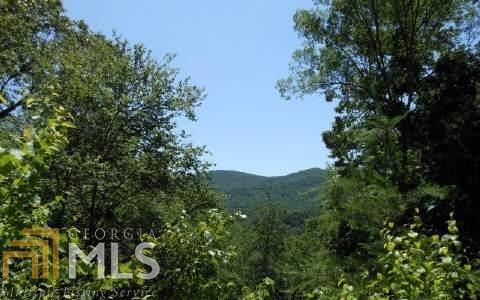 0 Lucius Rd 29.66 Acres, Cherry Log, GA 30522 (MLS #8623485) :: The Heyl Group at Keller Williams