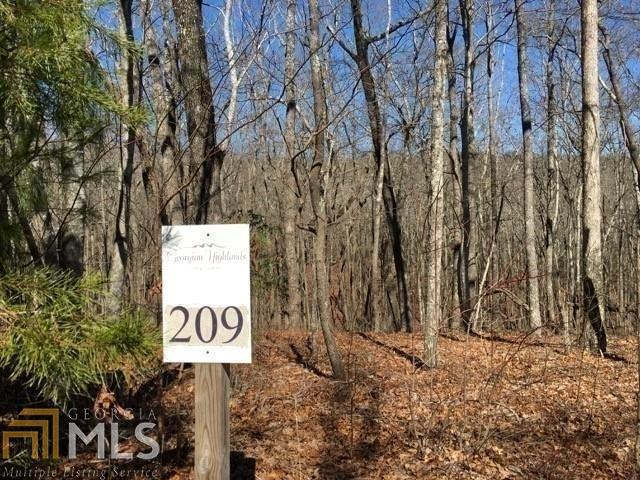 209 Northview Pkwy, Ellijay, GA 30536 (MLS #8623928) :: Team Cozart