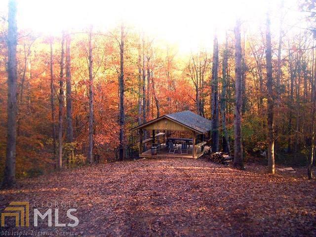 3046 Davids Home Church Rd, Comer, GA 30629 (MLS #8636521) :: The Heyl Group at Keller Williams
