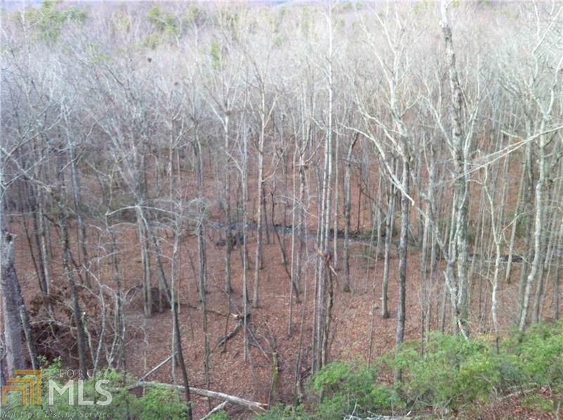 3565 Crooked Creek - Photo 1