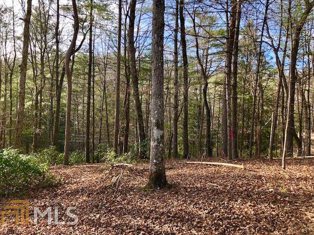 0 Chicasaw Dr Lt485, Ellijay, GA 30540 (MLS #8642704) :: Team Cozart