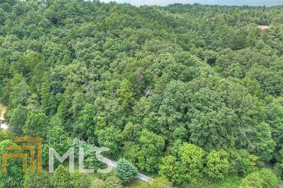 0 Toccoa River Ln, Mineral Bluff, GA 30559 (MLS #8646029) :: Bonds Realty Group Keller Williams Realty - Atlanta Partners