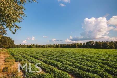 0 Mud Rd, Brooklet, GA 30415 (MLS #8661791) :: RE/MAX Eagle Creek Realty