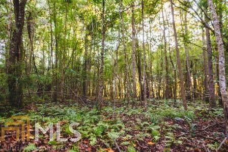 0 Mud Rd, Brooklet, GA 30415 (MLS #8661831) :: RE/MAX Eagle Creek Realty