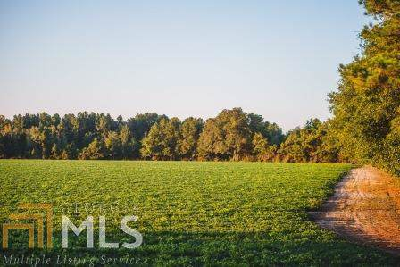 0 Sand Hill Rd, Brooklet, GA 30415 (MLS #8661894) :: Buffington Real Estate Group