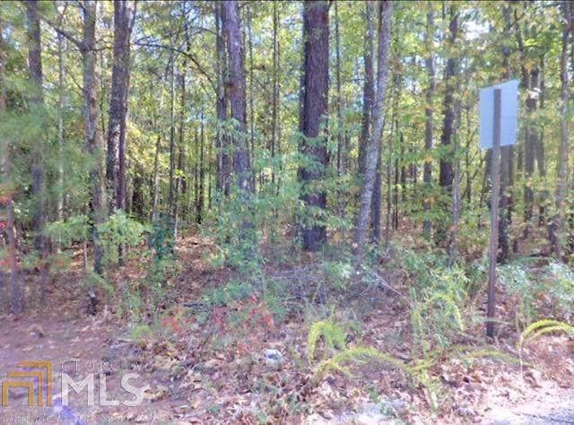 0 Timber Lane Dr #4, Douglasville, GA 30134 (MLS #8664503) :: Buffington Real Estate Group