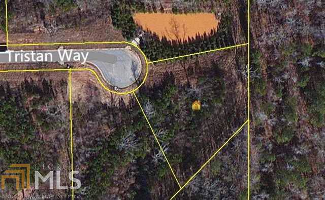 8020 Tristan Way, Whitesburg, GA 30185 (MLS #8676106) :: Buffington Real Estate Group
