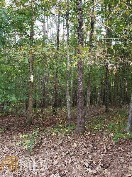 0 Pinyan Ln, Canton, GA 30115 (MLS #8677285) :: RE/MAX Eagle Creek Realty