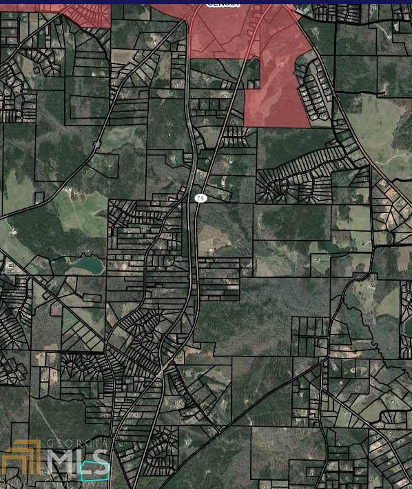 688 Ga Hwy 85 S, Senoia, GA 30276 (MLS #8679293) :: The Heyl Group at Keller Williams