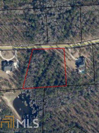 0 Sugarberry Ct #57, Statesboro, GA 30458 (MLS #8682956) :: RE/MAX Eagle Creek Realty