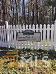 0 Brushy Mountian Pl, Rockmart, GA 30153 (MLS #8695401) :: The Heyl Group at Keller Williams