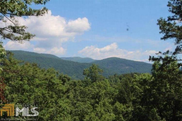 0 Miners Mountain - Photo 1