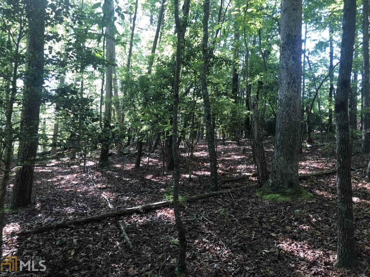 68 White Oak - Photo 1