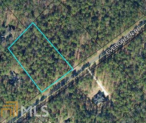 0 Evergreen Rd Lot 59, Dublin, GA 31021 (MLS #8712938) :: Bonds Realty Group Keller Williams Realty - Atlanta Partners