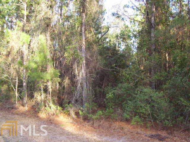 0 Lighthouse Cir Lot 21, Woodbine, GA 31569 (MLS #8714981) :: The Heyl Group at Keller Williams