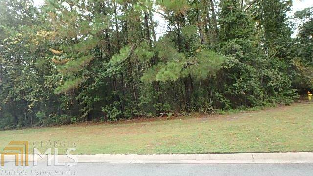 0 Heron Point Ln Lot 74, Woodbine, GA 31569 (MLS #8745519) :: The Heyl Group at Keller Williams