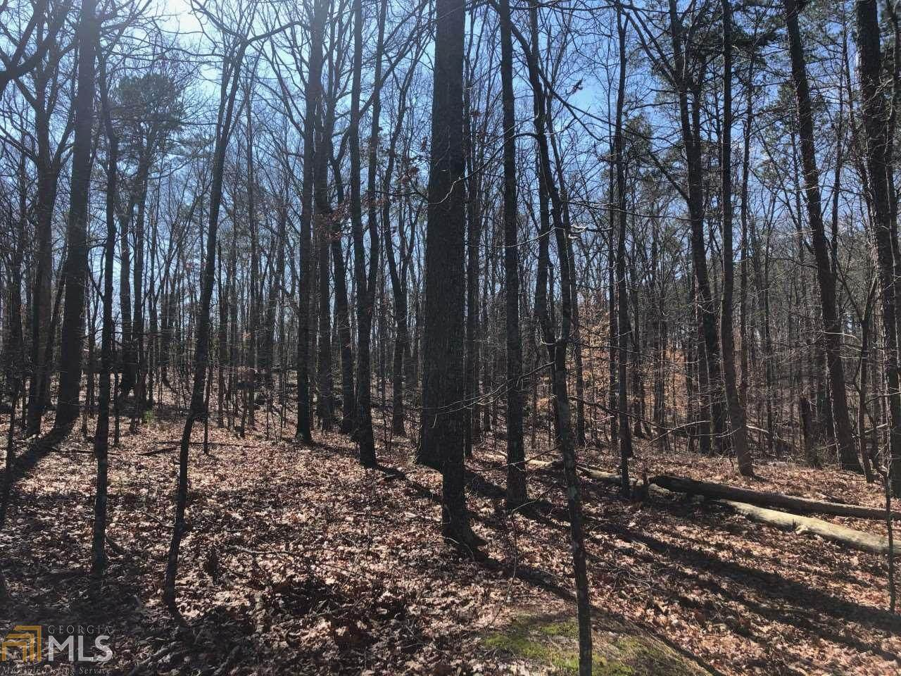 96 Country Creek Rd - Photo 1