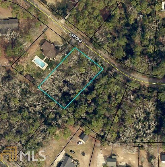208 Camelia Dr, Sylvania, GA 30467 (MLS #8749538) :: Maximum One Greater Atlanta Realtors