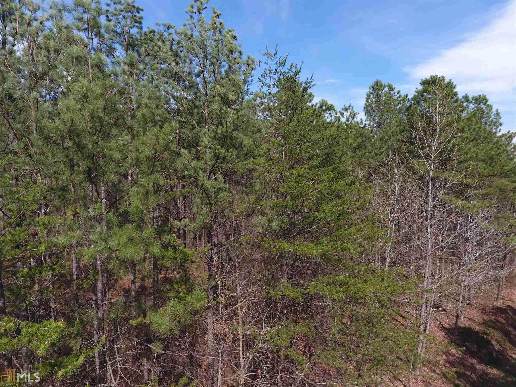 0 Pine Ridge Rd 5004-1, White, GA 30184 (MLS #8757765) :: Buffington Real Estate Group
