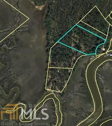 383 Oak Vw, Richmond Hill, GA 31324 (MLS #8775815) :: Buffington Real Estate Group