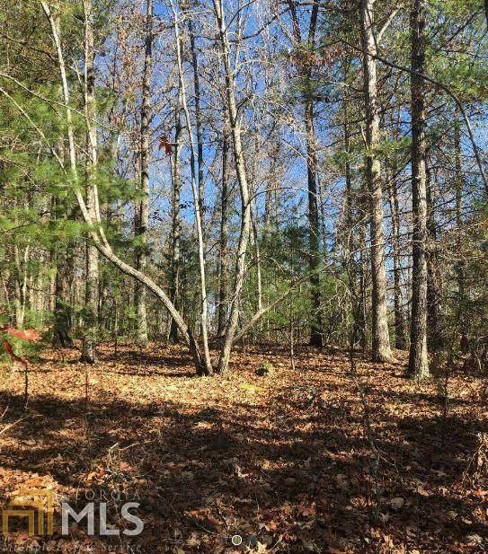 0 Copperhead Trl, Mineral Bluff, GA 30559 (MLS #8790945) :: Buffington Real Estate Group