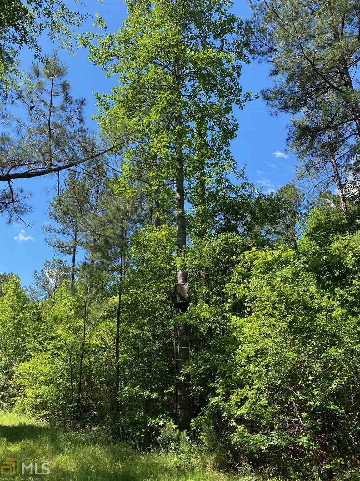 2226 Georgia Highway 19 - Photo 1