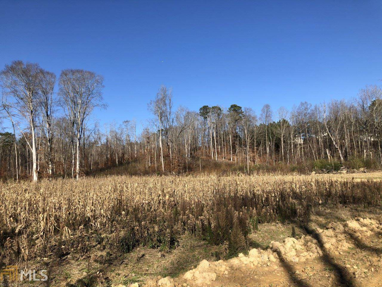 3000 Cascade Palmetto Hwy - Photo 1