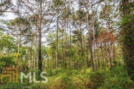 0 Mincey Rd, Brooklet, GA 30415 (MLS #8809873) :: Rettro Group