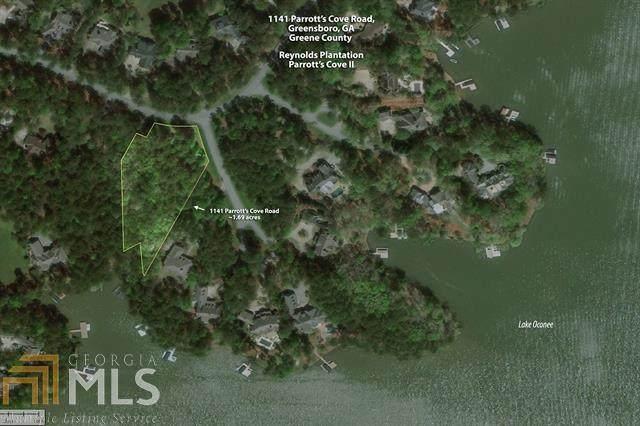 1141 Parrotts Cove Rd, Greensboro, GA 30642 (MLS #8811401) :: The Durham Team