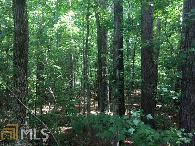 0 Jones Farm, Franklin, GA 30217 (MLS #8815319) :: Rettro Group