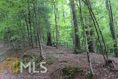 0 Mountain View Ct J 349, Ellijay, GA 30536 (MLS #8818072) :: Crown Realty Group