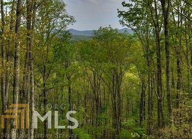 0 Johnston Rd, Ellijay, GA 30536 (MLS #8818735) :: Buffington Real Estate Group