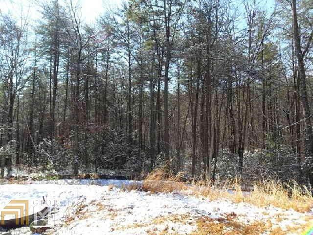 1452 Raspberry Ln, Clarkesville, GA 30523 (MLS #8819141) :: RE/MAX Eagle Creek Realty