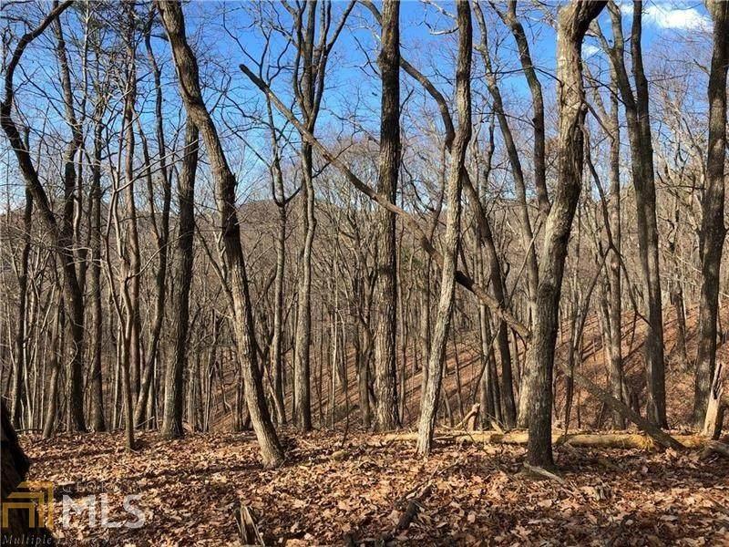 3727 Shadowick Mountain Rd - Photo 1