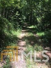 0 Pecks Mill Crk, Dahlonega, GA 30533 (MLS #8830642) :: The Heyl Group at Keller Williams