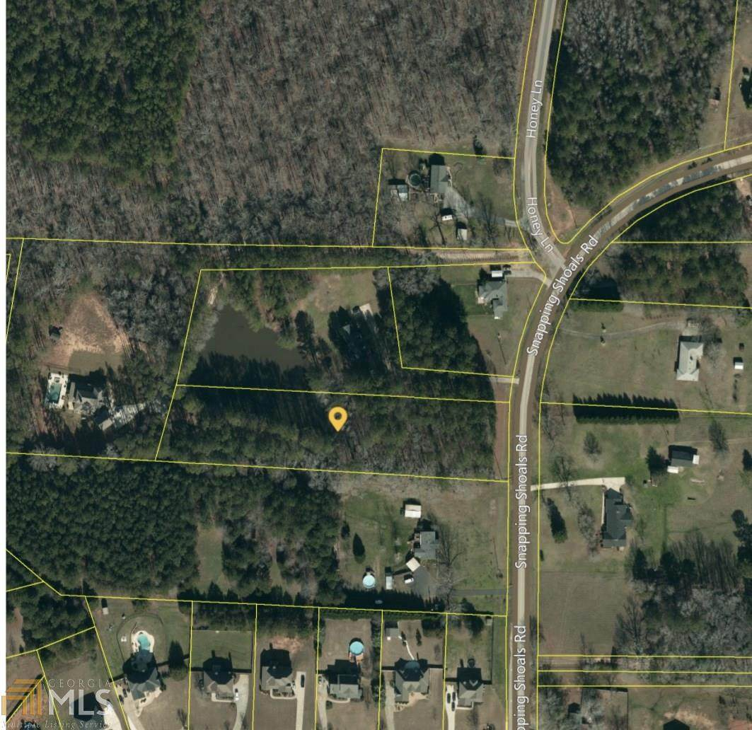 0 Snapping Shoals Rd - Photo 1