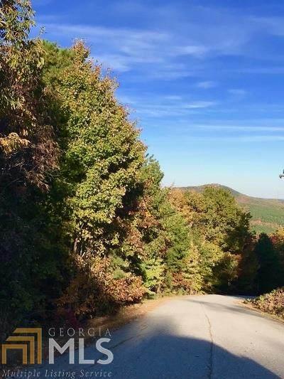 654 Mountain Sweet Drive, Clarkesville, GA 30523 (MLS #8833085) :: The Heyl Group at Keller Williams