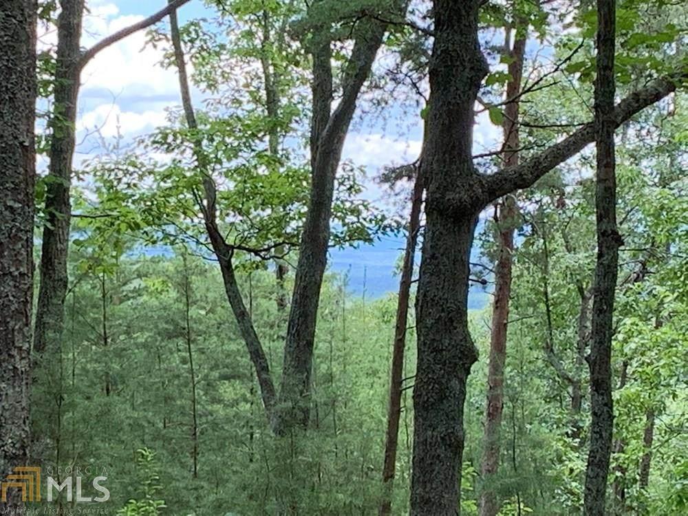 0 Blue Mountain Pkwy - Photo 1