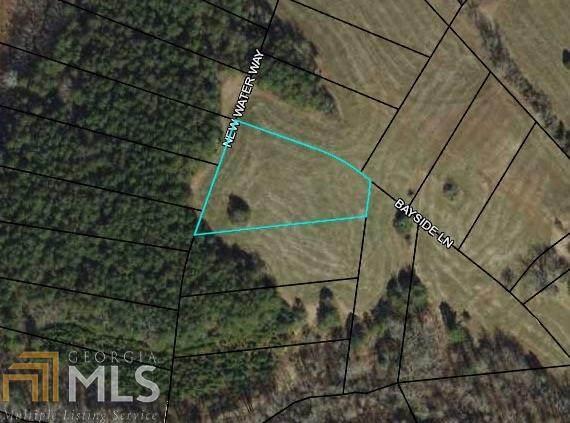 0 Bayside Ln Lot 42, Blairsville, GA 30512 (MLS #8848697) :: RE/MAX Eagle Creek Realty
