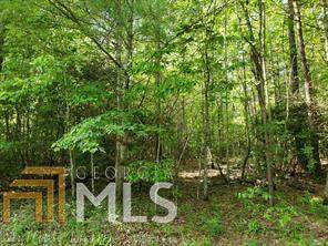 0 Tanner Cove Rd, Blairsville, GA 30512 (MLS #8848808) :: Keller Williams