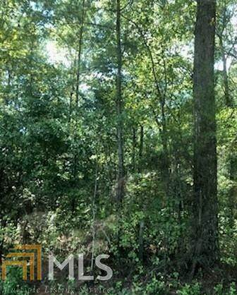 0 Old Elam Cemetary Rd - Photo 1