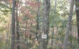 0 Forest Service Rd Lt 64, Blairsville, GA 30512 (MLS #8862593) :: Athens Georgia Homes