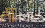 0 Fox Lake Lot 16, Blairsville, GA 30512 (MLS #8864478) :: The Durham Team