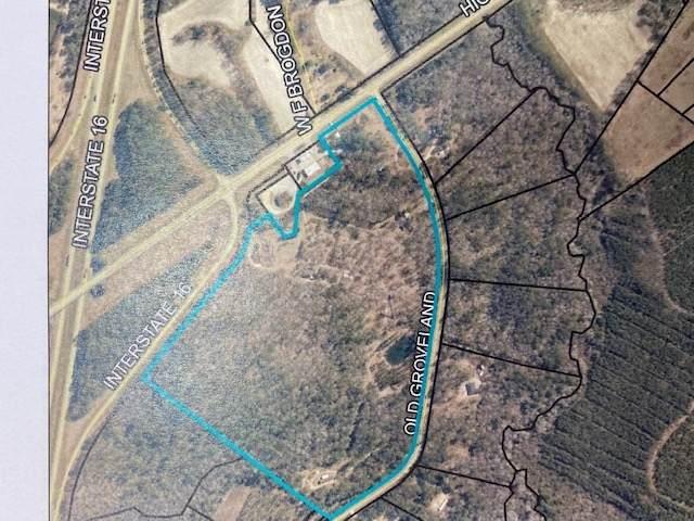 6175 Highway 67, Brooklet, GA 30415 (MLS #8864636) :: RE/MAX Eagle Creek Realty