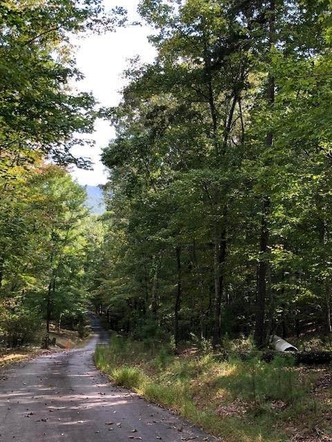 0 Little Forest Trail, Morganton, GA 30560 (MLS #8864683) :: Scott Fine Homes at Keller Williams First Atlanta