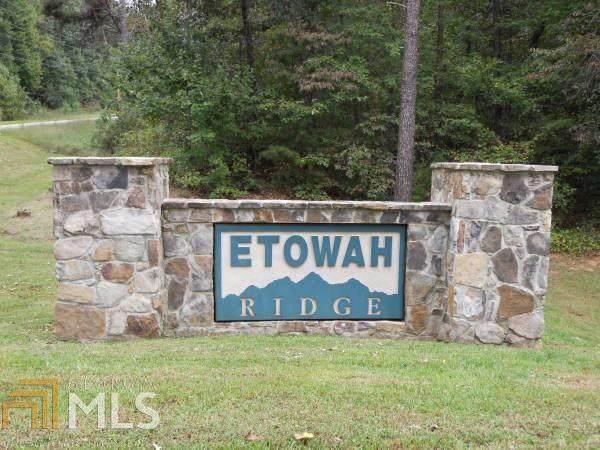 0 54B Etowah Ridge - Photo 1