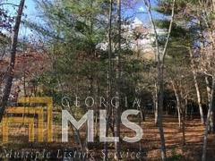 0 Gray Eagle Ln, Blairsville, GA 30512 (MLS #8896432) :: Team Cozart